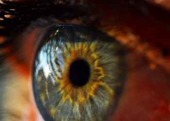 A Peek inside the Google Bionic Eye Patent