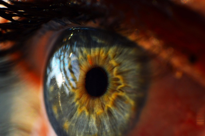 Google Bionic Eye Patent
