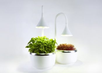 SproutsIO Smart Microgarden Enables Growing Vegetables in the Kitchen