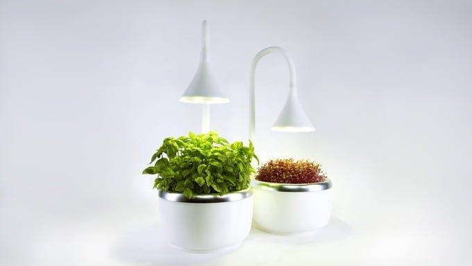microgarden