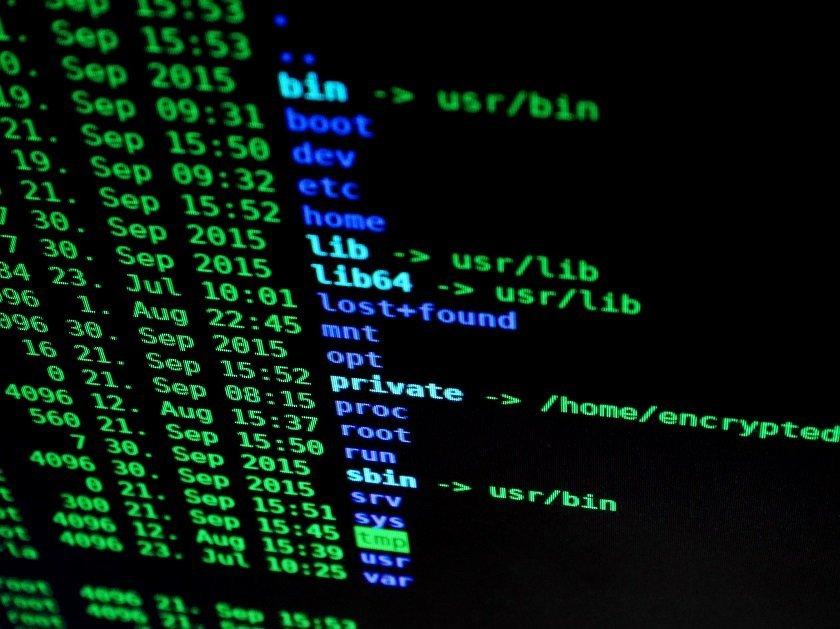 Authorities Shut Down Avalanche, the World's Largest Botnet Network
