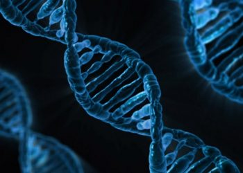 Are you up for familial DNA searching?