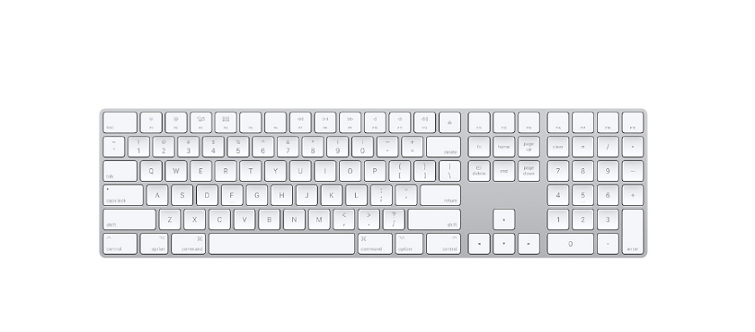 wireless magic keyboard
