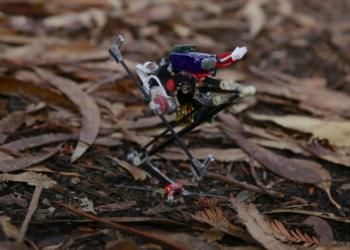Salto Robot: the Hi-tech Jumping Jack
