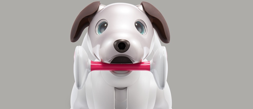 Robotic dog aibo