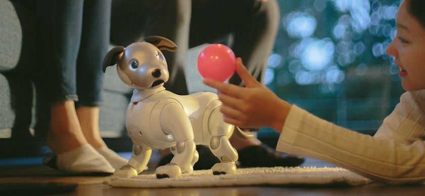 This Robotic Dog Knows What Makes You Happy or Sad