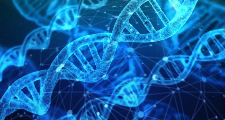 The world's first dual-core bio-computer using gene-editing tool