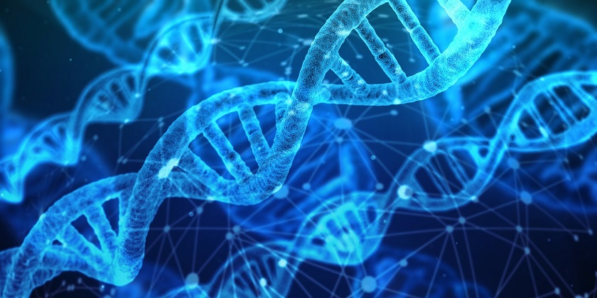 Image result for The world's first dual-core bio-computer using gene-editing tool