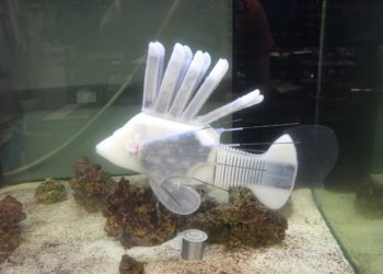 Newly developed robotic fish is powered by robot blood