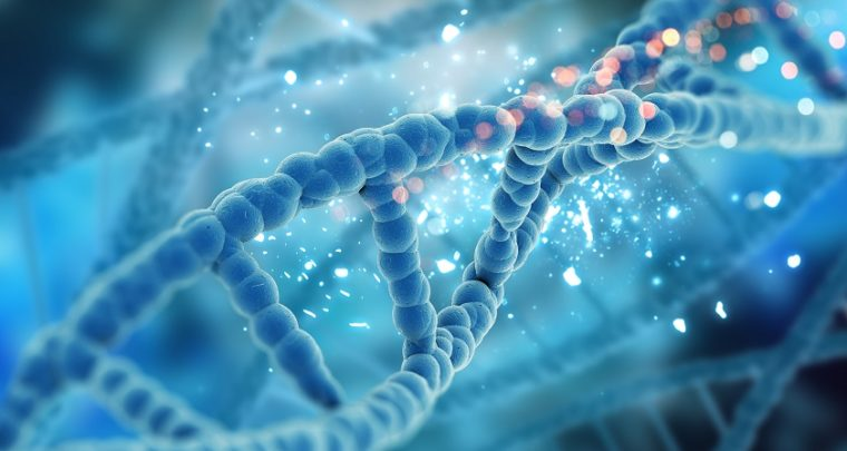 Data startup Catalog Stores 16GB of Wikipedia Text onto DNA strands