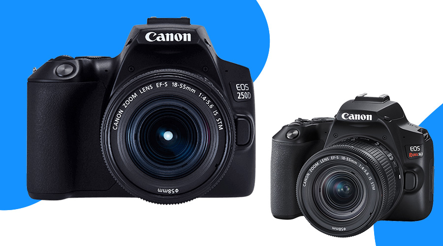 best dslr camera dslr cameras best dslr camera for beginners