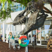 Google-Pay-Payments-Antitrust-Case